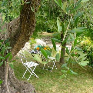 Jardin Bleu Azur