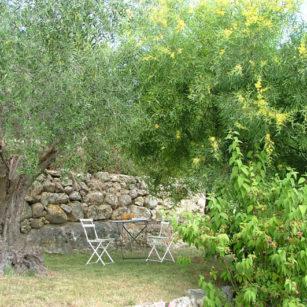 jardin Olivier maison d'hôtes Bleu Azur