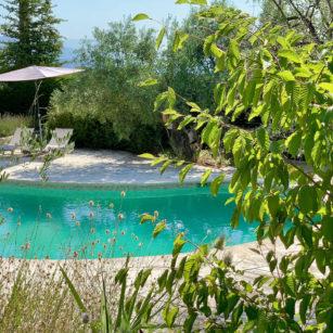 Jardin verdure maison hotes bleu Azur